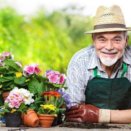 5-Reasons-Gardening-is-Great-for-Seniors---June-blog-post